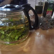 licores&azeites17