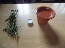 licores&azeites3