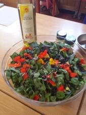Salada selvagem