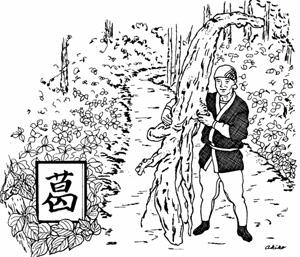kuzu-drawing