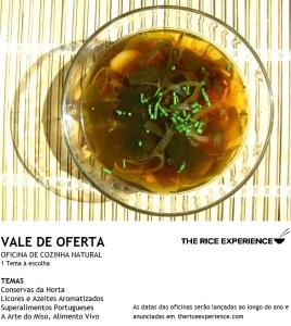 VALE OFERTA - 1OFICINA LIVRE